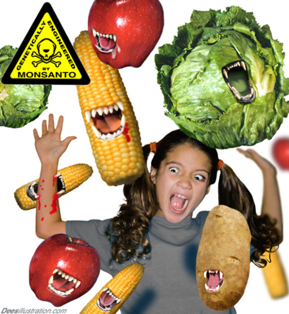 gmo-alimentos-modificado-geneticamente